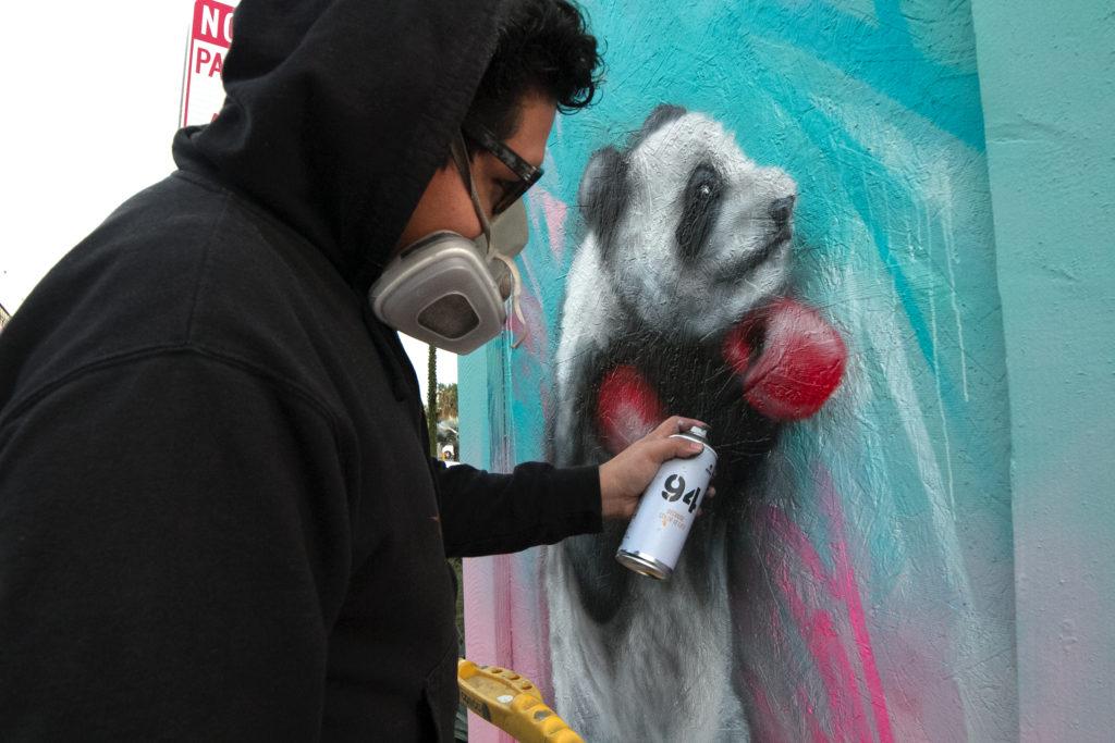 DTSA street art